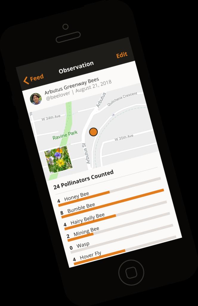 Insight Citizen Science – The mobile app that lets citizens